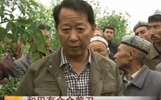 和田有个金剪刀(20120718)