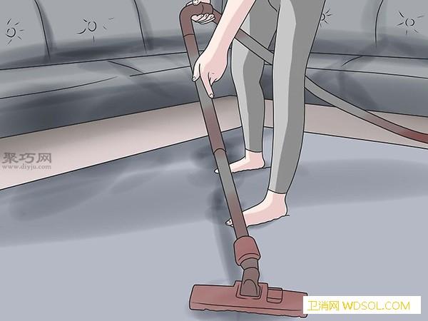 怎么防止蚂蚁到回来来看消灭黑蚂蚁的方法_碎屑-消灭-蚂蚁-食物- ()