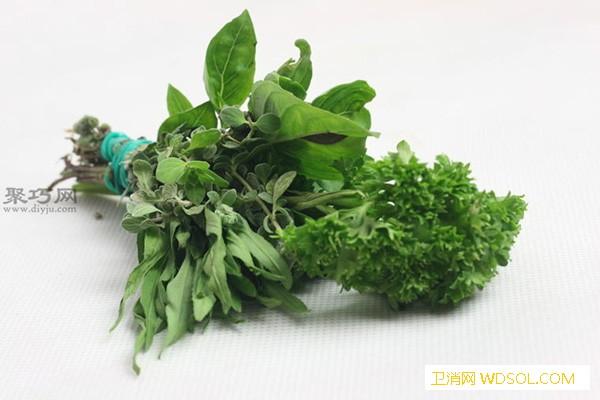 室内干燥法干燥草本植物图片教程_干燥器-草本植物-草本-风干-
