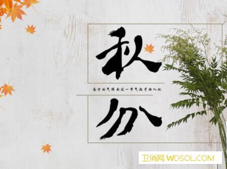 2019年秋分出生的猪宝宝好不好_相生-霜降-秋分-节气-
