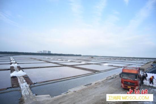 泉州碳九泄露残留油污清理完成将严肃处_泉州市-泉州-盐场-