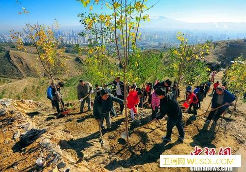 大规模国土绿化行动:2020年森林覆_沙化-耕地-乌鲁木齐市-
