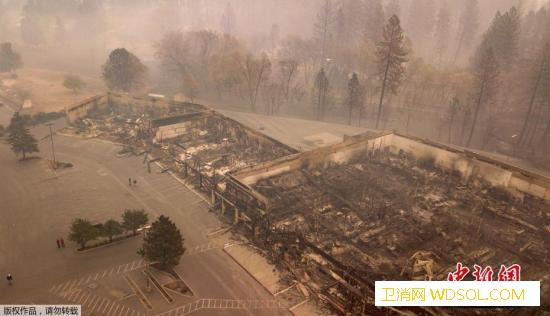 美国北加州山火已致83人死仍有500_加州-山火-警长-